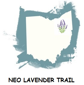 NEO Lavender Trail